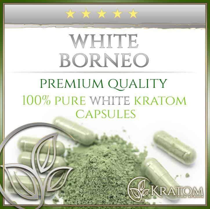 White-Borneo-Capsules