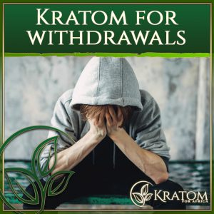 Kratom for Withdrawals