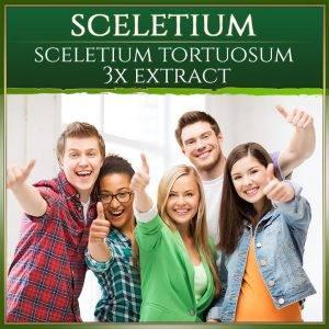 Sceletium Capsules